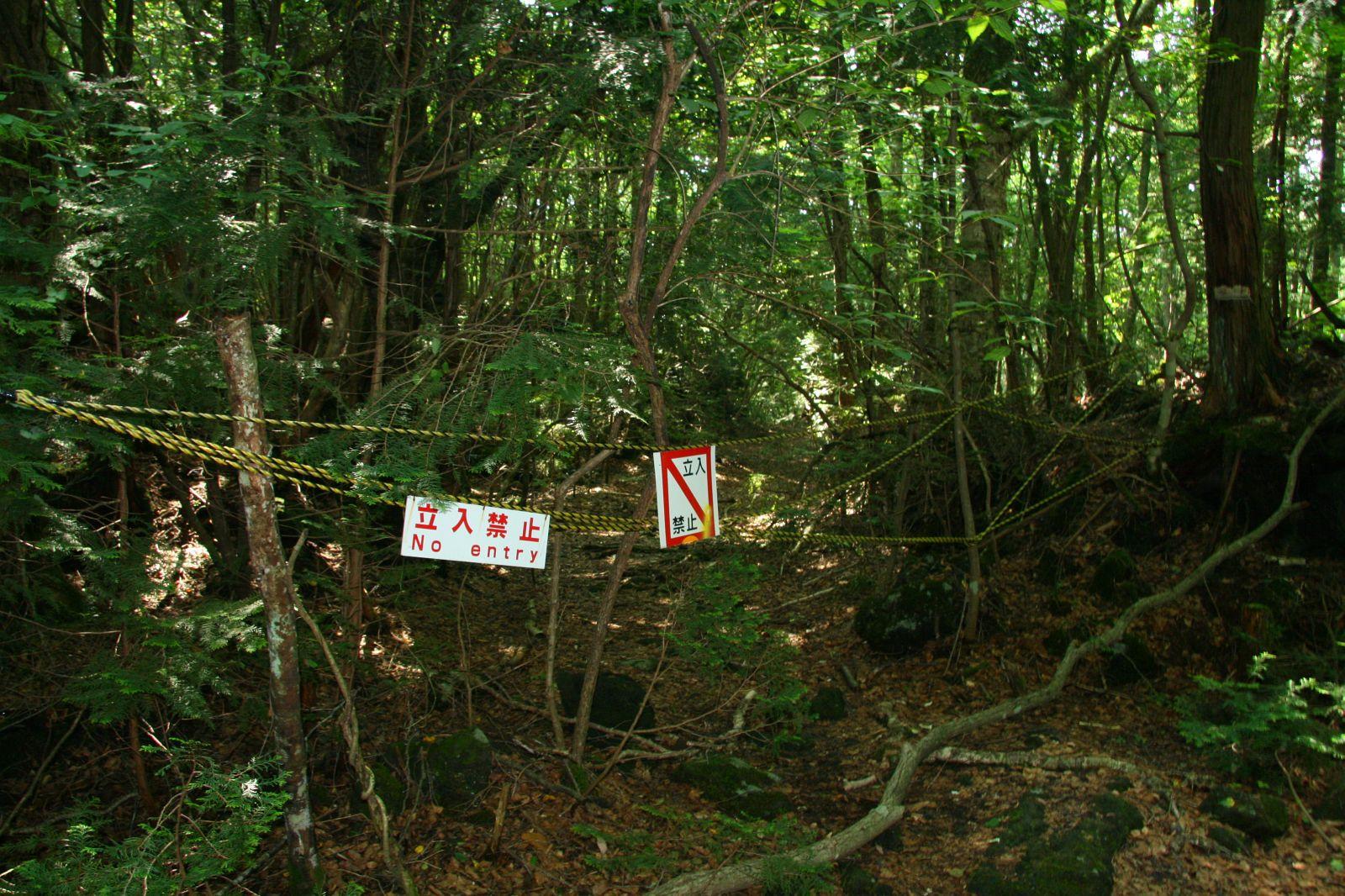Selbstmordwald Japan
