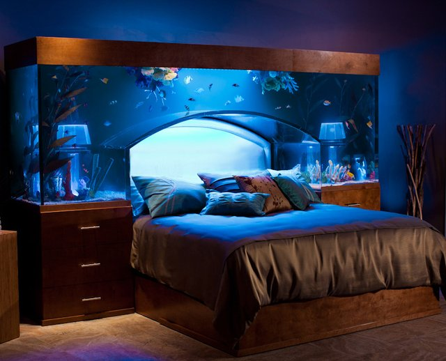 fish tank pool table - the best fish 2017