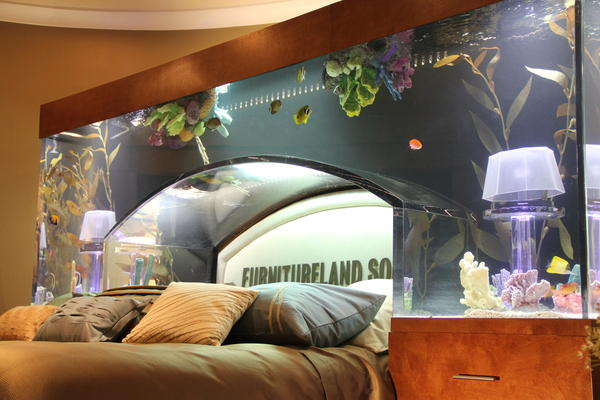 Aquarium bed by acrylic tank manufacturers dj storm 39 s blog Furniture land south