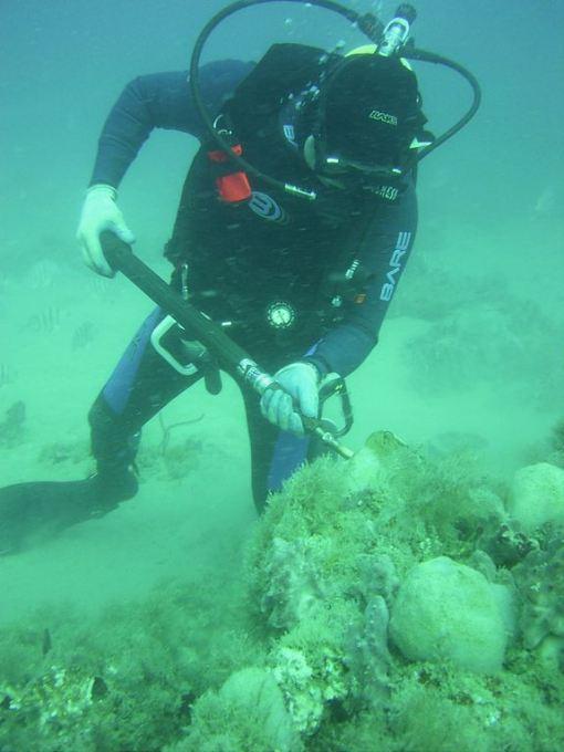 J-Reef-tool-test.jpg1356118176