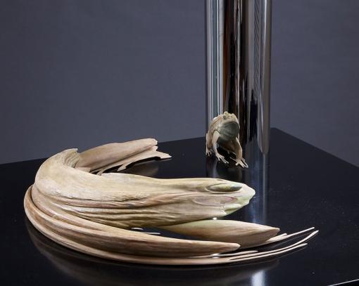 Jonty-Hurwitz-Anamorphic-sculptures-Frog-2