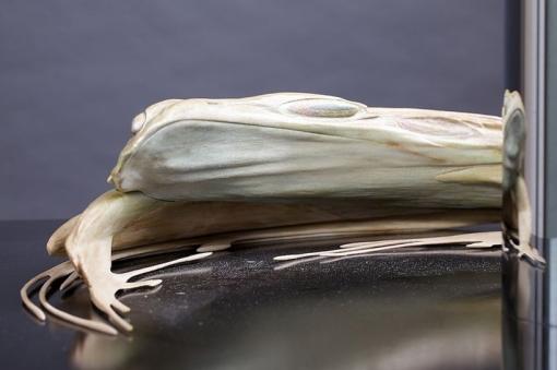 Jonty-Hurwitz-Anamorphic-sculptures-Frog-3