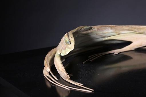 Jonty-Hurwitz-Anamorphic-sculptures-Frog-4