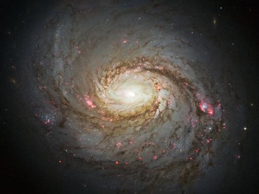 space239-spiral-galaxy-hubble_65834_600x450-1