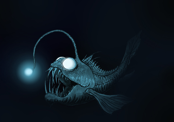 Sea Anglerfish Dj Storm S Blog