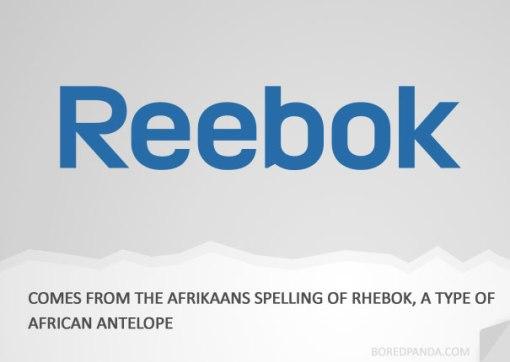 name-origin-explanation-reebok