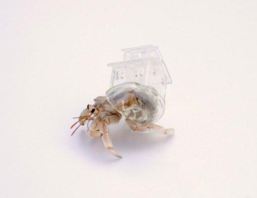 aki-inomata-hermit-crab-shells-designboom-05