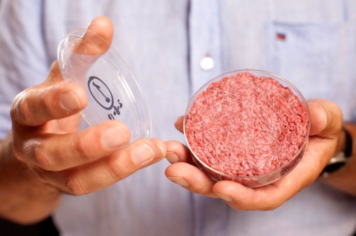 cultured-beef-first-lab-grown-burger-designboom-01