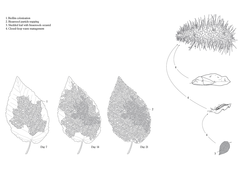 Synthetic-creatures-could-save-nature-says-Alexandra-Daisy-Ginsberg_dezeen_ss_3