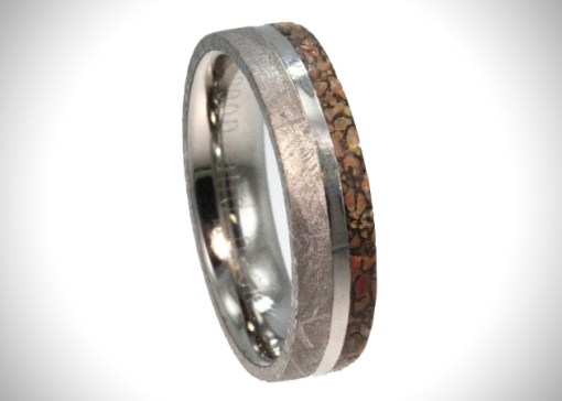 Meteorite-And-Dinosaur-Bone-Rings-1