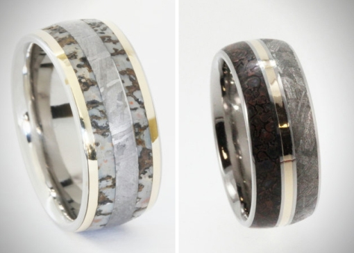 Meteorite-And-Dinosaur-Bone-Rings-4