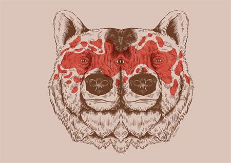 miguel-sousa-bear