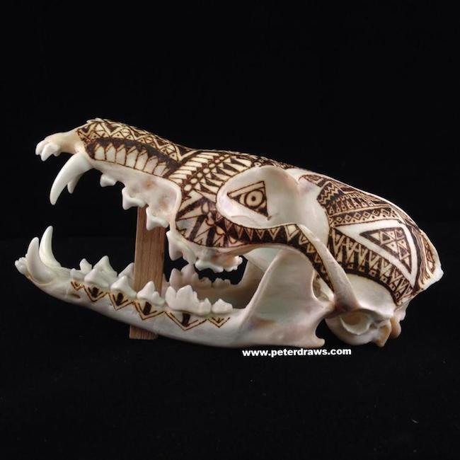 peter-deligdisch-skull-art-ink-drawking-pyrography17