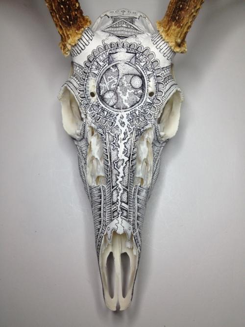 peter-deligdisch-skull-art-ink-drawking-pyrography5