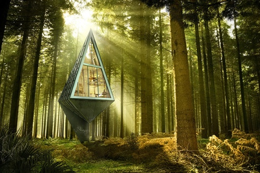 Sustainable-Pine-Tree-Shaped-Houses-5