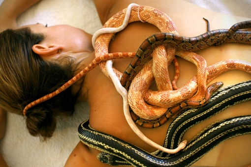 Snake-Massage-Spa-in-Jakarta-Indonesia-1