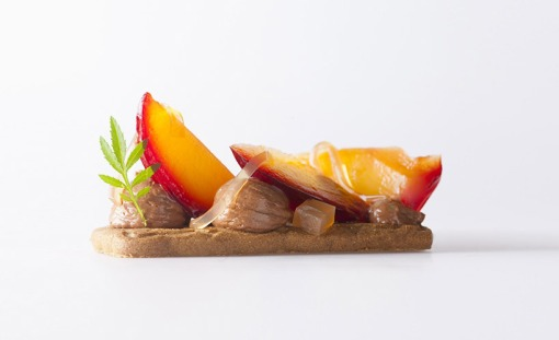 bernard-lahousse-studies-the-science-of-food-pairing-designboom-13