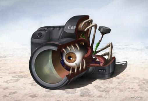 1-Anatomy-of-Camera-e1284689030682