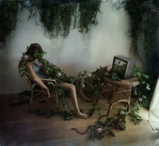 dihaze-beautiful-bizarre-04